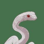 白蛇, へび, ヘビ, white snake