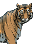 虎 ,とら ,トラ , tiger